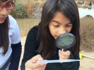 Albuquerque youth learn about stormwater and watershed health